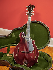 082217_7066_Collings Mandolin