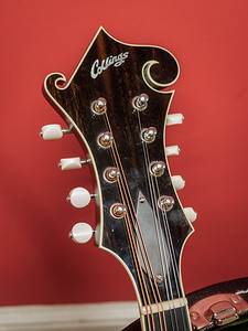 082217_7069_Collings Mandolin