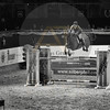 Aniko Towers Photo Amadeus Mevisto Show jumping equestrian photography -7