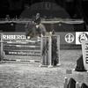 Aniko Towers Photo Amadeus Mevisto Show jumping equestrian photography -14