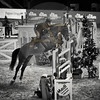 Aniko Towers Photo Amadeus Mevisto Show jumping equestrian photography -18
