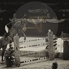 Aniko Towers Photo Amadeus Mevisto Show jumping equestrian photography -11