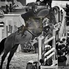 Aniko Towers Photo Amadeus Mevisto Show jumping equestrian photography -13
