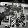 Aniko Towers Photo Amadeus Mevisto Show jumping equestrian photography -15