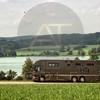 Aniko Towers Photo Scania Horse Truck-149