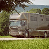 Aniko Towers Photo Scania Horse Truck-159