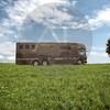 Aniko Towers Photo Scania Horse Truck-153