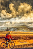 Biker on paved walking-bike path from Old Faithful Geyser to Morning Glory Pool - 13-Edit - 72 ppi-2