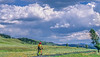 Cyclist in Yellowstone National Park's Lamar Valley - 3-Edit - 72 ppi-3