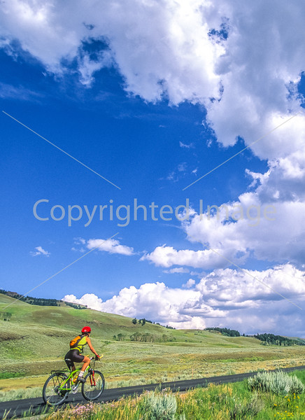 Cyclist in Yellowstone National Park's Lamar Valley - 7-Edit - 72 ppi-2