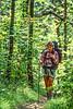 Taum Sauk section of Ozark Trail in Missouri -4 - 72 ppi