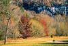 Cyclist in Steel Creek region of Upper Buffalo Wilderness Area; Buffalo River bluffs in view - 5-Edit - 72 ppi
