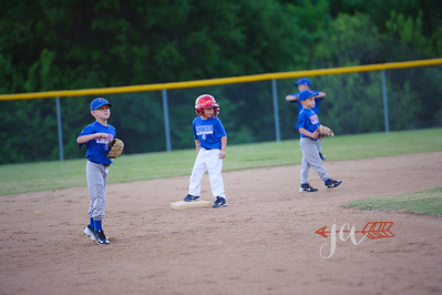 Cubs (3 of 189)