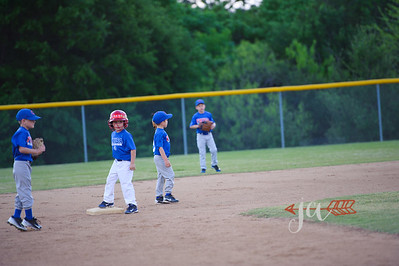 Cubs (2 of 189)