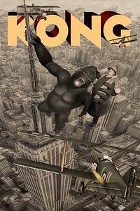Kong Steve 2