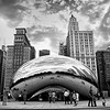 Chicago 309