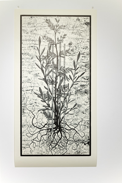 Acacia & Olive - 2'x4'  woodcut on paper