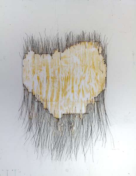 Untitled - 3' x 5' steel, plaster, wire