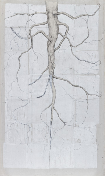 Taproot system - 3' x 5' Carbon and monoprint on cement board