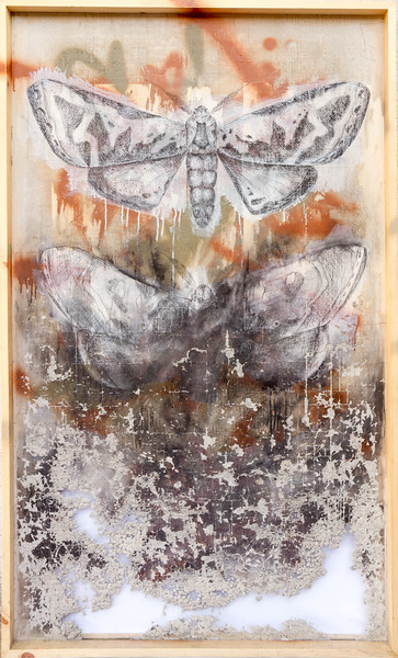 Desintegrating moths - 3' x 5' spray paint, acrylic, and carbon on cement board framed in pine