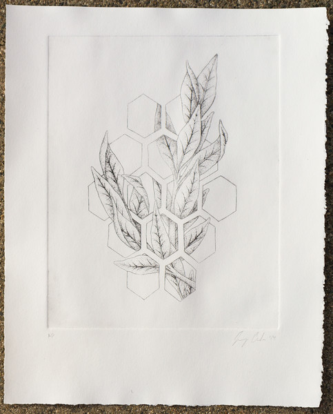 """Untitled - 8"""" x 10"""" etching"""