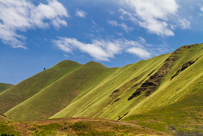 Lush green hills and blue sky, Hells Canyon National Recreation Area, Idaho, USA