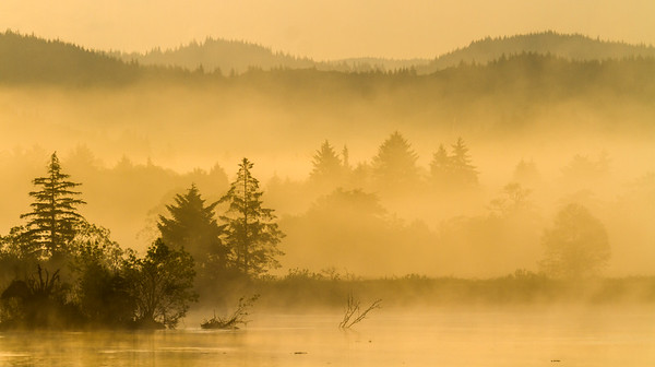 Morning on the Columbia River