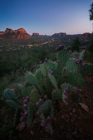 Sedona-Twilight
