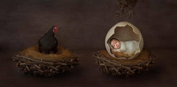 Caroline_Bowen_newborn_winner_web_03