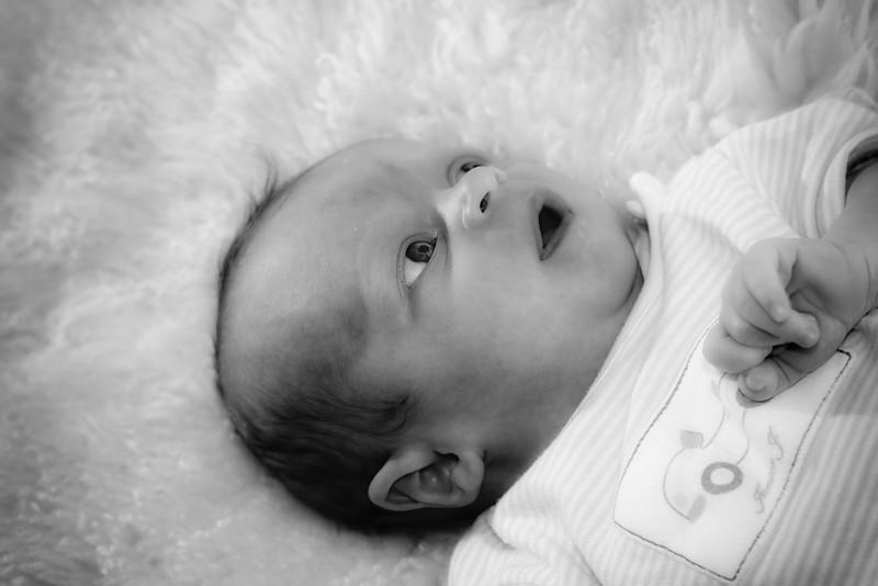 Baby Albie 038