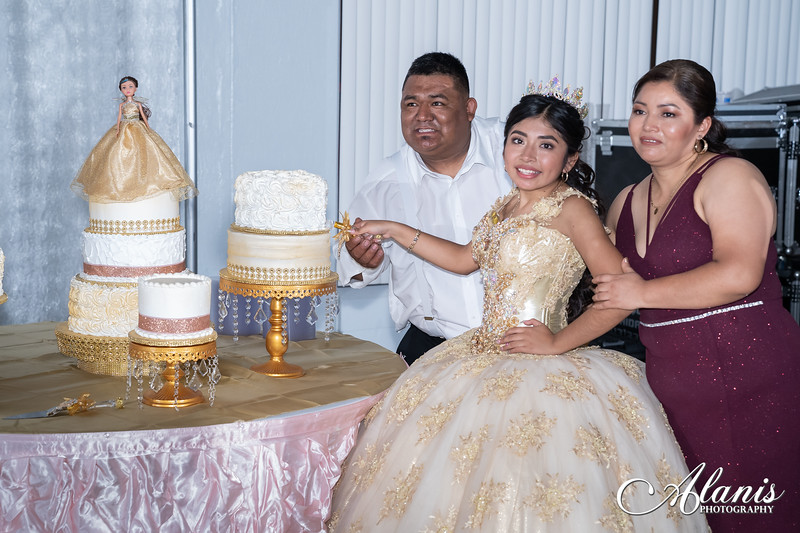 tampa_bay_wedding_quinceanera_photographer_Dalia_PartyDay-347