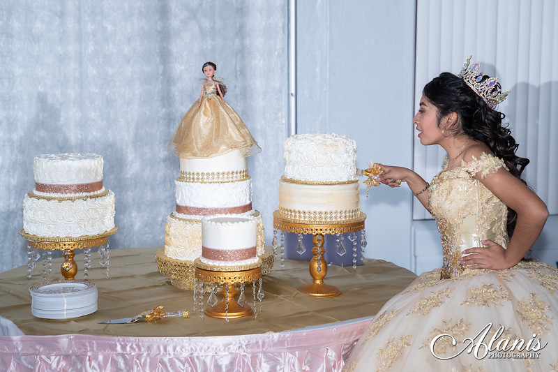 tampa_bay_wedding_quinceanera_photographer_Dalia_PartyDay-341