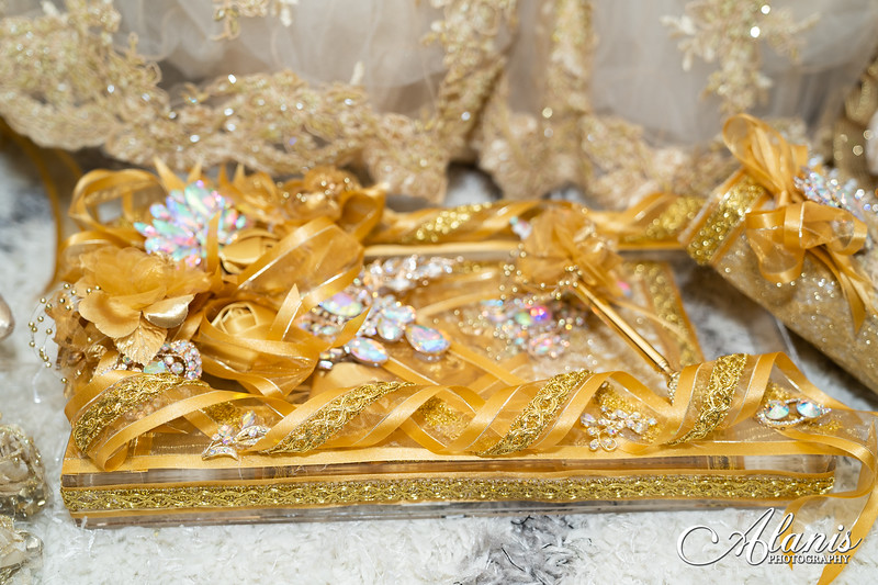 tampa_bay_wedding_quinceanera_photographer_Dalia_PartyDay-6