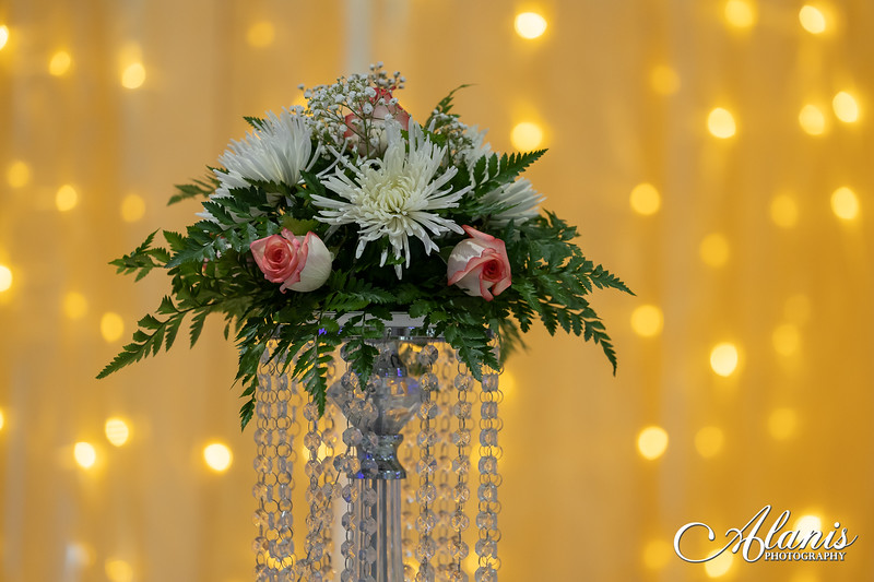 tampa_bay_wedding_quinceanera_photographer_Dalia_PartyDay-161