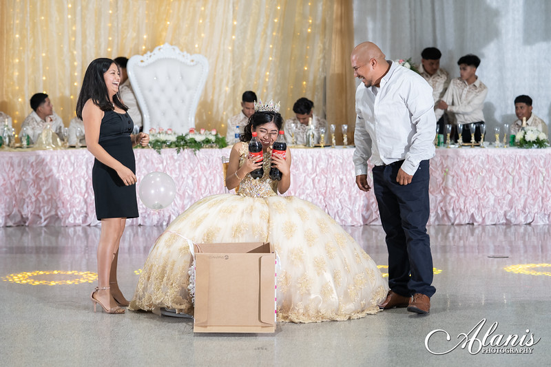 tampa_bay_wedding_quinceanera_photographer_Dalia_PartyDay-268