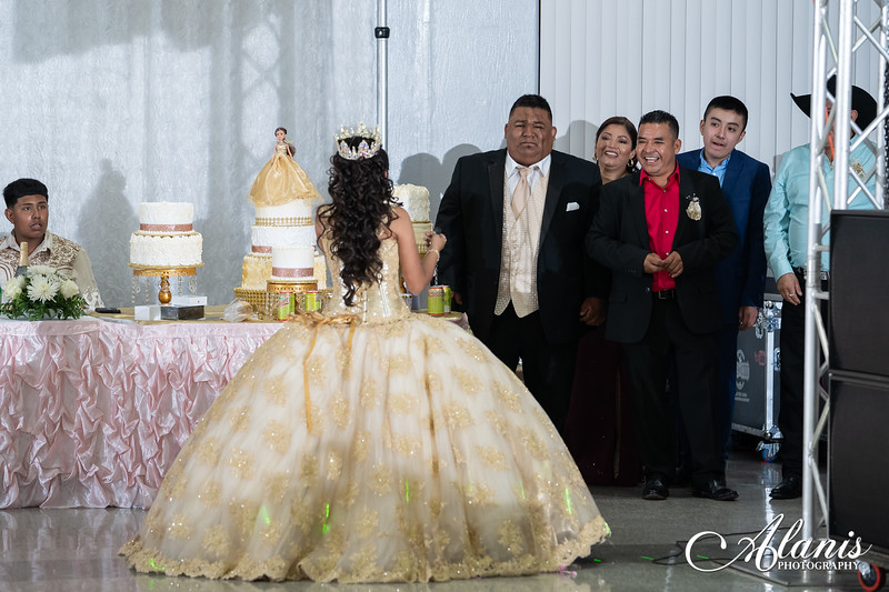 tampa_bay_wedding_quinceanera_photographer_Dalia_PartyDay-283