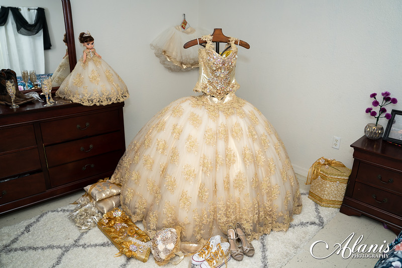 tampa_bay_wedding_quinceanera_photographer_Dalia_PartyDay-1