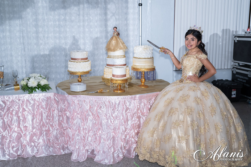 tampa_bay_wedding_quinceanera_photographer_Dalia_PartyDay-339