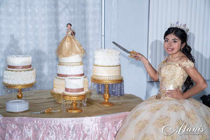 tampa_bay_wedding_quinceanera_photographer_Dalia_PartyDay-340