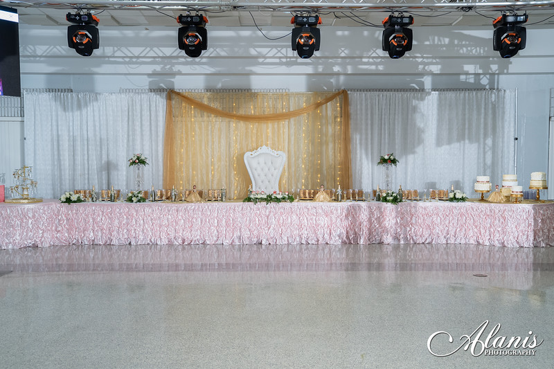 tampa_bay_wedding_quinceanera_photographer_Dalia_PartyDay-159
