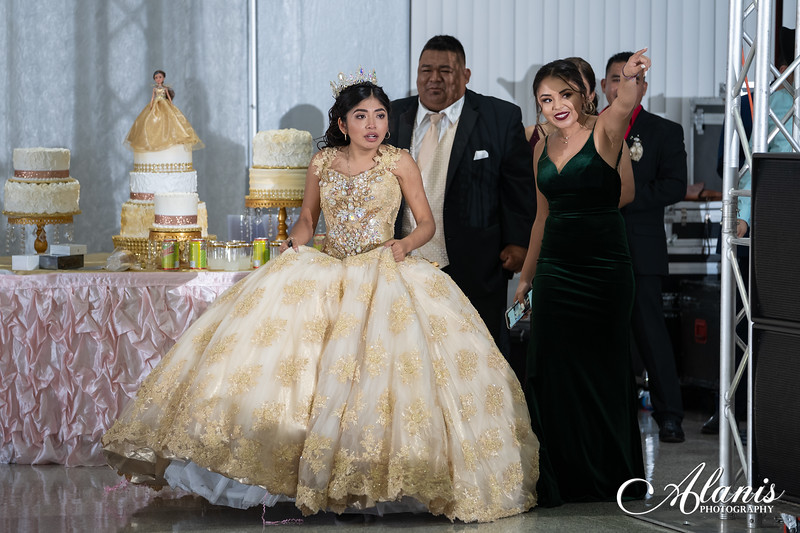 tampa_bay_wedding_quinceanera_photographer_Dalia_PartyDay-286