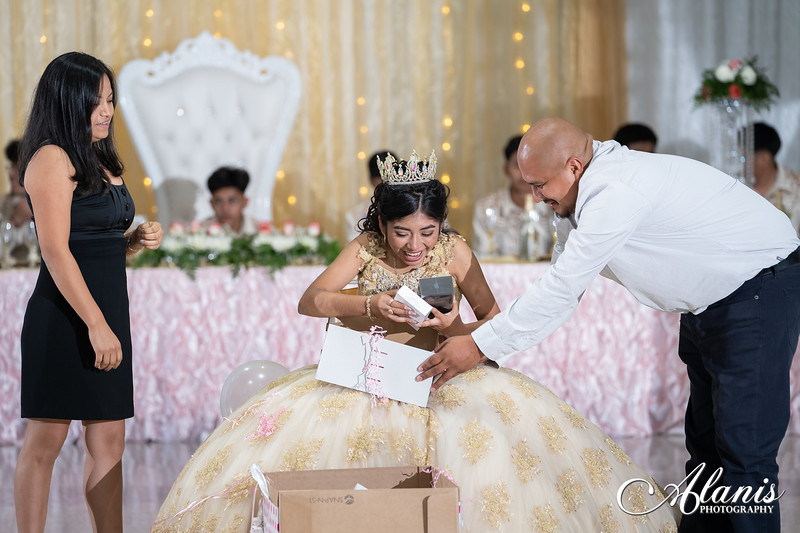 tampa_bay_wedding_quinceanera_photographer_Dalia_PartyDay-273