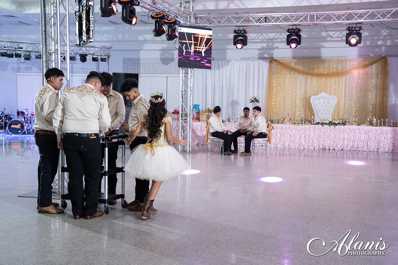 tampa_bay_wedding_quinceanera_photographer_Dalia_PartyDay-307