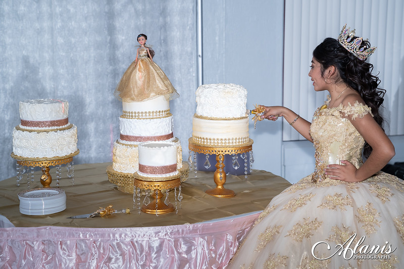 tampa_bay_wedding_quinceanera_photographer_Dalia_PartyDay-343