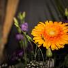 Gosberton Flower Festival 2014 - 102