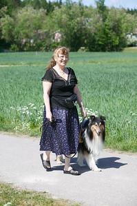 Epilepsi hunden Atlas