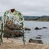 19 06-15 Monastary Beach 5638