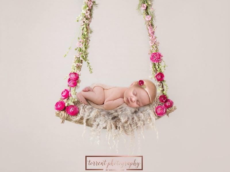 Brittany Button Newborn Swing