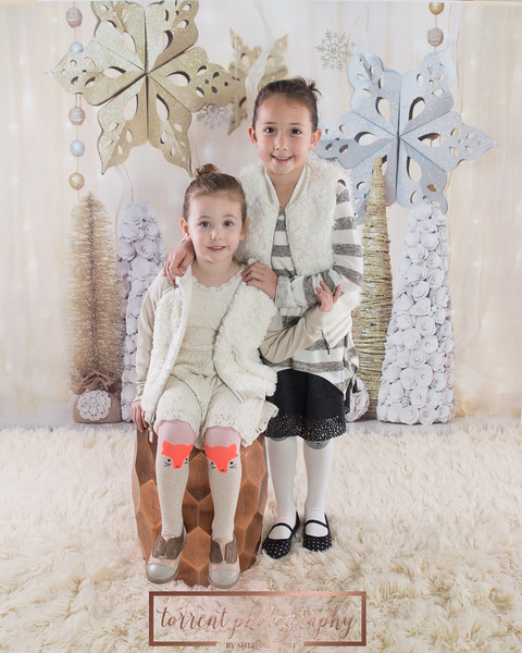 Amy Buckley Holiday Mini 2016 (6 of 33)