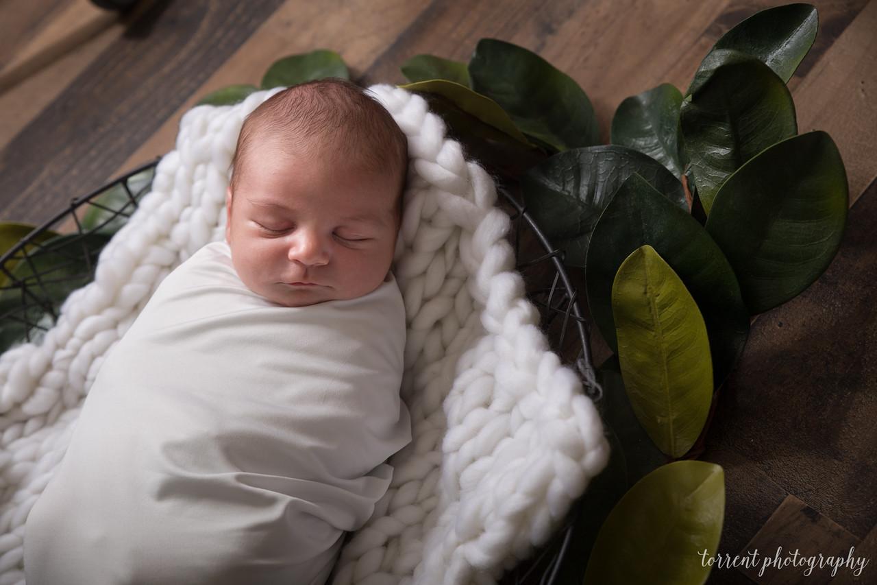 Chase newborn  (33 of 96)